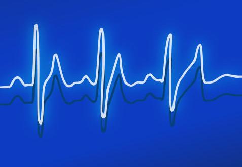 Bioprotesi a cuore battente