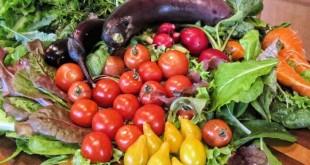 Frodi alimentari, un evento internazionale