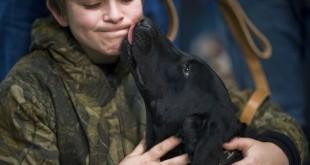 Linee guida per la Pet therapy