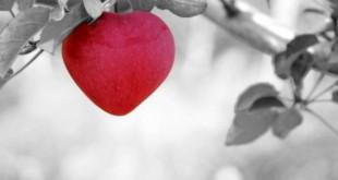 Fibrillazione atriale, il ritmo del cuore