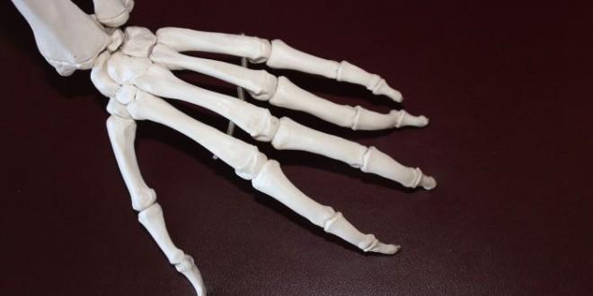 Salute delle ossa delle donne, colloqui gratuiti