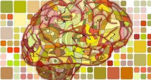 Quando il cervello diventa fossile