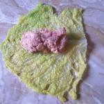 invltini di verza con carne e salciccia. evviva l'inverno
