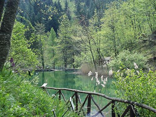 Il parco nazionale di campigna monte falterona e delle foreste casentinesi - Valbonella bagno di romagna ...