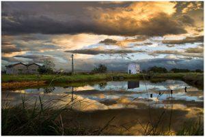 Le saline di Cervia, avamposto meridionale del Parco del Delta del Po
