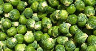 I Cavoletti di Bruxelles, buoni in cucina, ma un toccasana invernale per la salute