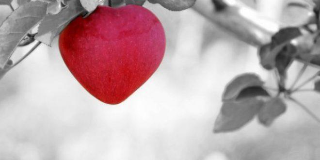 Generosità: ecco il segreto per vivere più a lungo, felici. Inizia così