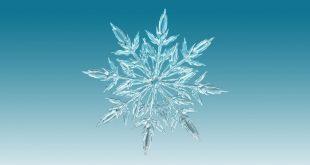 Fibrillazione atriale: ecco la cura che viene dal ghiaccio