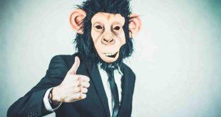 Vuoi essere felice? Impara a dominare la tua scimmia