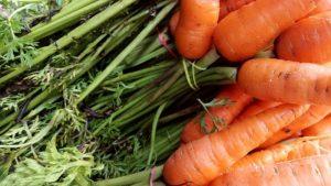 I prodotti biologici ci piacciono sempre di più. Ma sono davvero migliori?