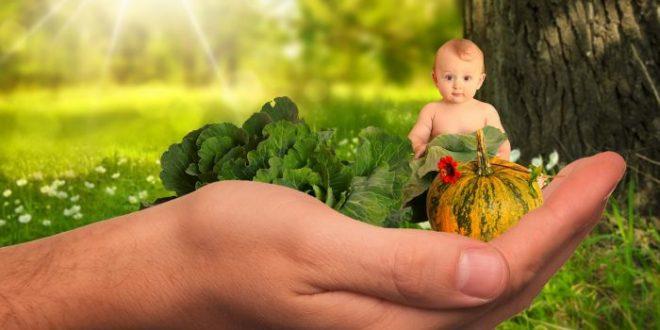 Verdure a tavola: che fare quando il bambino dice no