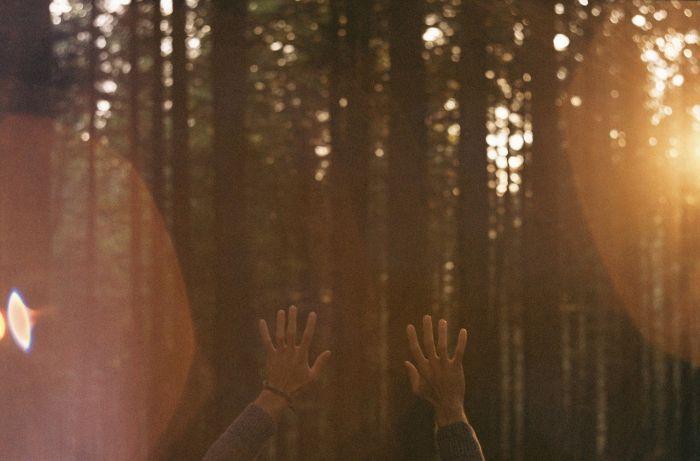 Kurama Reiki Ho:  l' energia universale che guarisce attraverso le mani