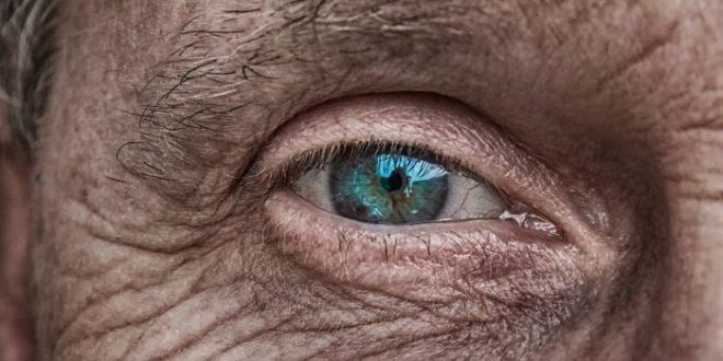Anziani e abbandoni estivi: tutti i dettagli sull'invecchiamento