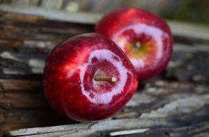 Cellule staminali nei cosmetici: è giunto il tempo delle mele