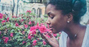 Odori ed emozioni (l'odore della felicità): uno studio dell'Università di Pisa