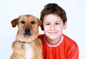 Una Zampa in famiglia: insegnamenti su come accogliere un cucciolo