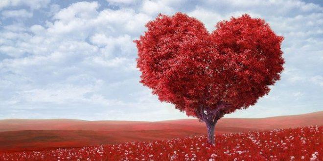 Amore e semiotica: ecco il quadrato semiotico dei sex symbol