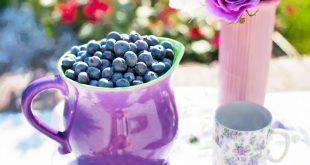 Festa del mirtillo del Baggioledo: appuntamento al 18 agosto