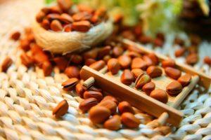 Alimenti 10 e lode. Pinoli: energizzanti e fonte di buonumore