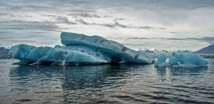 Riscaldamento globale: quando un gene è attivato dal calore