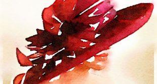 Barbara Ann Parker, un romanzo a tinte rosa per tre amiche in vacanza