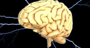Giornata Internazionale Epilessia: malattia sociale ma molti progressi