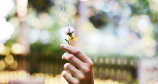 Ritualità: riscopri tre riti antichi di purificazione per la casa e la persona