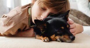 Pet Visiting: gli animali entrano in ospedale per aiutare i piccoli pazienti